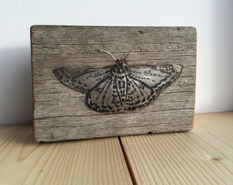 Metal Butterfly inlaid in reclaimed timber