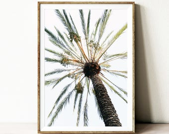 Instant download palm tree print, digital download wall art, tropical photography, palm decor, boho decor, Summer decor, Nature art