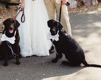 RING BEARER Dog Bone - Perfect for a Pet in your wedding