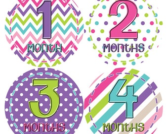 Monthly Baby Stickers Baby Month Stickers Baby Girl Month Stickers Monthly Photo Stickers Monthly Milestone Stickers 277
