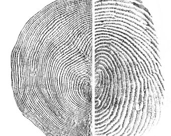Against Forgetting Fine Art Print - Thumbprint and Tree Ring Rubbing - Two Sizes Available