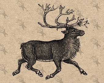 Vintage Christmas Reindeer Instant Download Digital printable clipart graphic Burlap Fabric Transfer Iron On Pillows Totes Towels HQ 300dpi