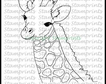 Baby Giraffe (TLS-1812) Digital Stamp. Cardmaking.Scrapbooking.MixedMedia.