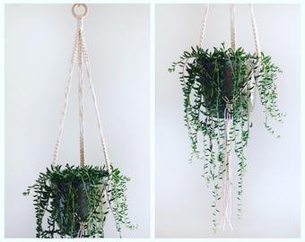 "Macrame  Plant Hanger / Natural Cotton / 45"" Long"