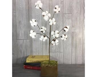 """28"""" Faux Cotton Stem (12 stems)"""