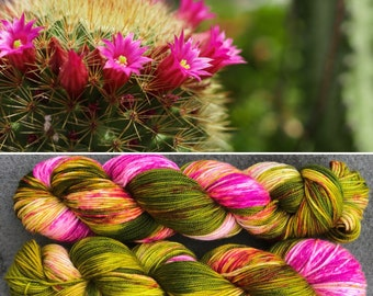 Flowering Cactus Sport, indie dyed merino nylon baby sock yarn