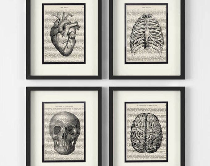 Featured listing image: Vintage Anatomy Set, Heart, Chest, Skull, Brain over Vintage Medical Book Pages (set of 4)