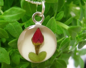 """Real Rose Pendant - round w/ white background & 18"""" Sterling Silver filled chain - real flower jewelry - tween, teen, mother, floral, sweet"""
