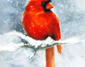 Cardinal Watercolor Art Print. Winter Snow Red Bird Painting.