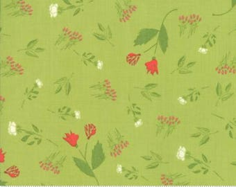 The Front Porch by Sherri & Chelsi for Moda Yardage