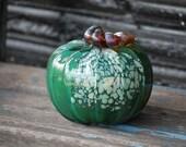 Green Spot Pumpkin, 5&quo...