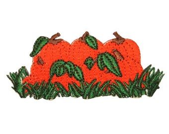 ID 0826 Pumpkin Pile Patch Halloween Farm Harvest Embroidered Iron On Applique