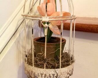 Peach Floral Birdcage