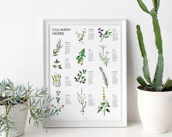 Culinary Herbs Art Print   kitchen decor, poster print, art poster, wall art, wall decor, gifts for her, culinary art, watercolor herbs