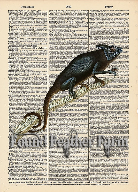 """Vintage Antique Dictionary Page with Antique Print """"Chameleon"""""""