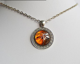 Dragonfly in Amber (Czech Glass) on Silver Ornate Pendant Necklace - Claire Fraser Sassenach Jewelry - Outlander inspired