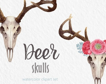 Watercolor clipart, Deer clipart, skull, flower crown, digital clipart, hand painted clipart, floral clipart, antlers clipart, woodland