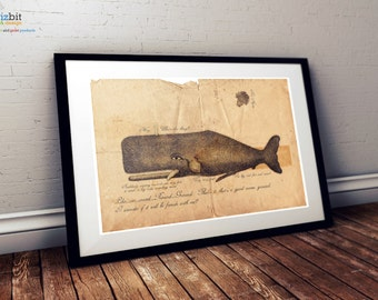 Hitchhiker's Guide to the Galaxy - Whale and Petunias - vintage poster, print - Landscape Version