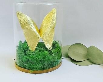 Sculpture papillon Origami/ Cloche Verre/ Papier dorée/ Taxidermie/ Cabinet Curiosité/ Cadeau pour lui/  Deco papillon