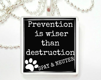 Prevention is wiser than destruction glass tile pendant