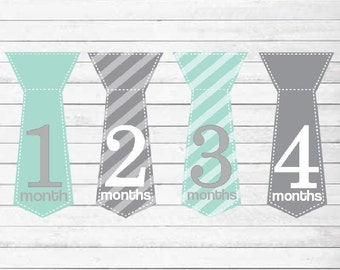 Monthly Baby Boy Tie Stickers, Milestone Stickers, Baby Month Stickers, Monthly Bodysuit Sticker, Monthly Stickers Gray Turquoise (Silas)