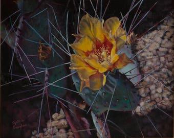 Desert Cactus with Needles