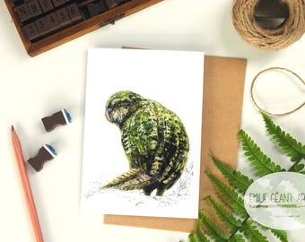 Kakapo folded card from the New Zealand native birds series by Emilie Geant, from original watercolor painting