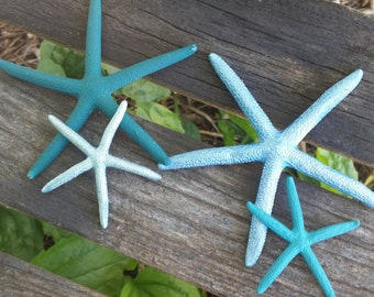Beach Wedding Decor, Painted Starfish, 12