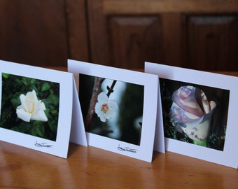 Flower Photo Card Collection