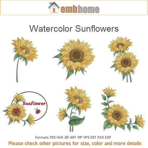 Watercolor Sunflowers Floral Machine Embroidery Designs Instant Download 4x4 5x5 6x6 Hoop 15 APE2051