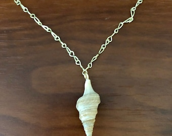 Lucky Shell Charm Necklace