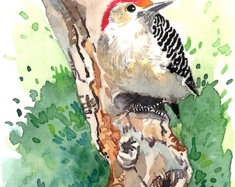 ACEO Limited Edition 1/25- Woodpecker in summer woods