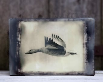 Wild goose flying. Mixed media encaustic art. Bird, gifts for bird-lovers and nature-lovers