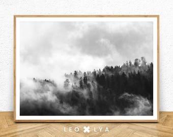 Forest Photography, Trees Photo, Landscape Print, Black and White Landscape, Nature Landscape, Forest Print, Fog Print, Fog Forest