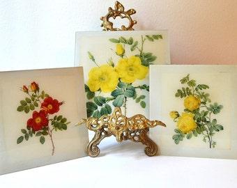 vintage set of three flower rose glass pictures trivets prints