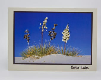 "Photo Greeting Card - White Sands Yuccas - Folded 5""x7"""