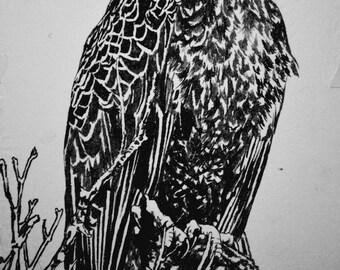 "Bald Eagle, hand carved woodblock print, 25""x37"""