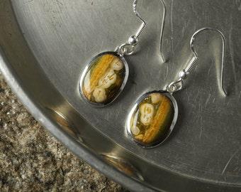 3.75cm OCEAN JASPER Earrings Bezel Set in Sterling Silver - Natural Jasper Cabochon Drop Earrings J569