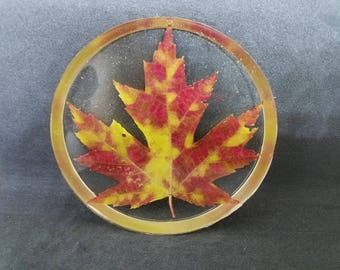 Maple Leaf Coaster 04