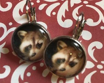 Raccoons glass cabochon earrings - 16mm