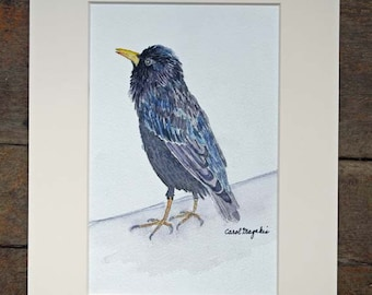 """Starling - 5""""x7'- Watercolor Painting"""