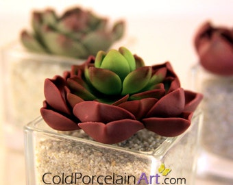 Succulents Centerpieces - Cold Porcelain Art - Made to Order