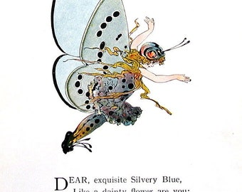 Silvery Blue Butterfly,  Spring Azure Butterfly - 1914 Antique Book Page - Butterfly Babies, Butterfly Children - 9 x 6