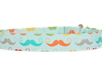 Mustaches Dog Collar / Martingale Dog Collar
