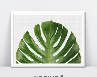 Monstera Leaves, Tropical Leaves Print, Botanical Print, Tropical Wall Art Decor, Botanical Wall Print, Palm Leaf Poster, Leaf Decor