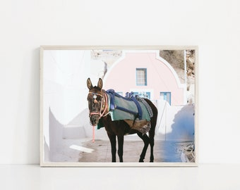 Donkey Unframed Photo Print