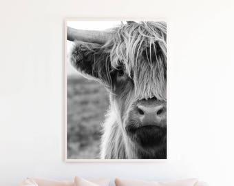 Highland Cow Print, Highland Cow Black and White Photography Printable Poster, Highland Cow Photo, Highland Cow Wall Art Print, hc3c1bw