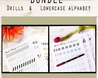 BUNDLE 1: Brush Lettering Lowercase Alphabet & Basic Strokes for Large Brush Pens