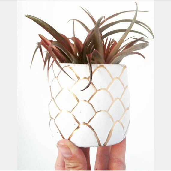 Pineapple Planter/Air Planter/Desk Planter/Pineapple decor/New Home Gift/Housewarming Gift/Pineapple Lover/Succulent Planter/Modern Planter