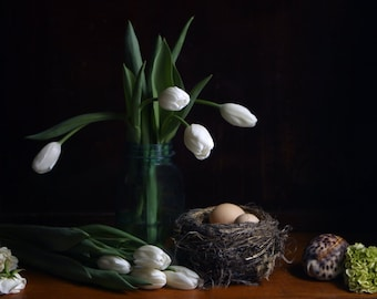 Black and White Still Life Photography of Brown Eggs in a Nest and White Tulips